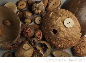 Materialien für die Knopfherstellung: Nuss und Stein