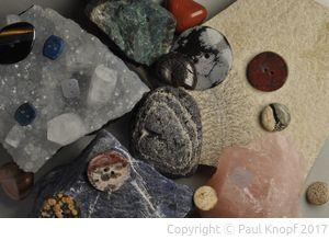 Fossilien und Steine als Knopfmaterial